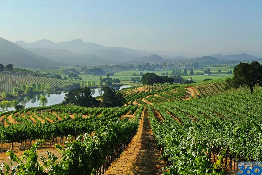 Helicopter Tour and Wine Tasting Experiences in Napa Valley, CA