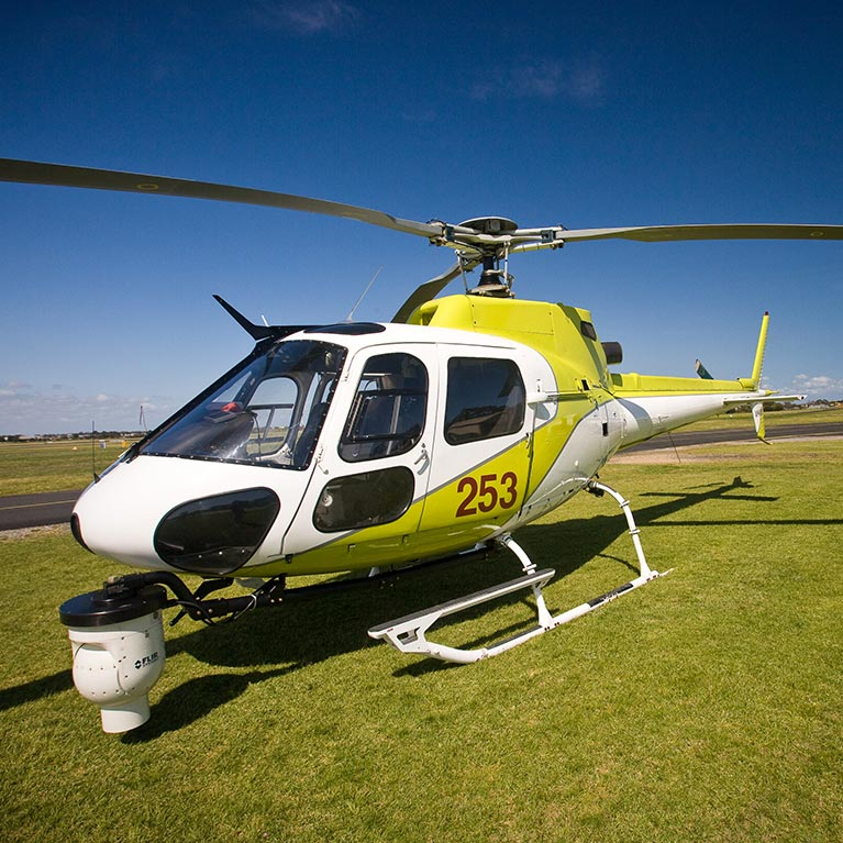 Aerial Surveys by Helicopter